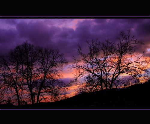 morning trees nature clouds sunrise 333views photographia reginaaustria brillianteyejewel adoublefave theperfectphotographer colorsinourworld lesamisdupetitprince novavitanewlife