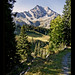 ortstock-braunwald-switserland-fields