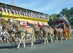 festival, vehicle, pack animal, horse harness, carriage,