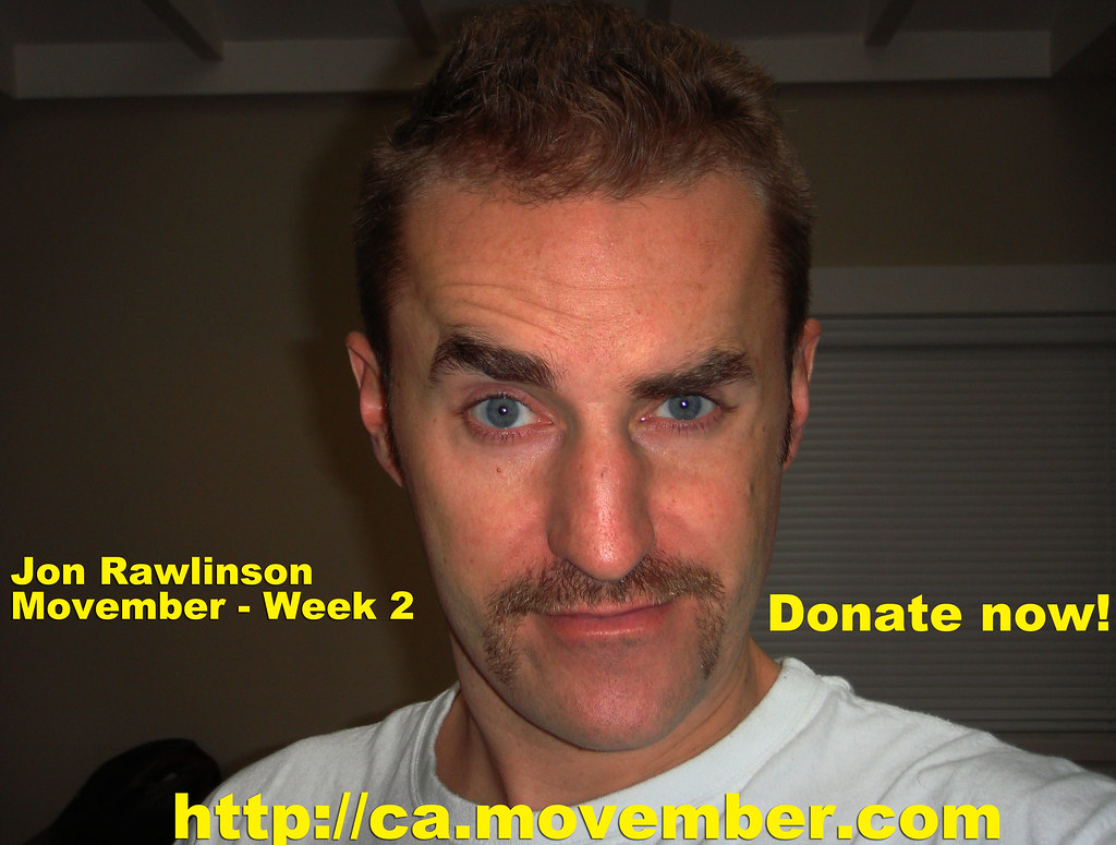 Movember Donate By Cheque
