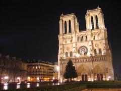 La catedral de Notre-Dame se alza, majestuosa, en la noche parisina.