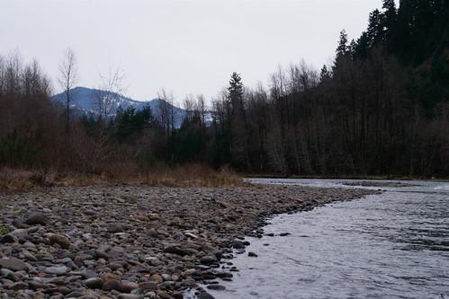 Fishing report middle fork willamette below hills creek for Willamette river fishing report