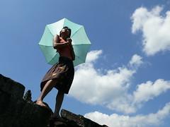 Dina Umbrella