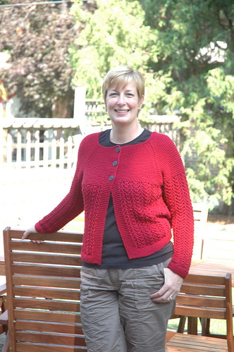 #227 - February Lady Sweater