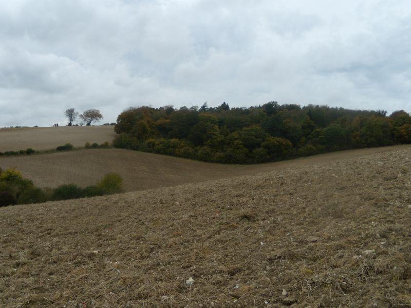 ploughed view Goring circular