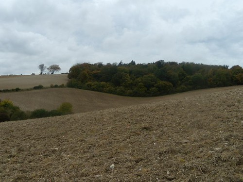ploughed view