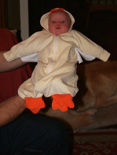 Halloween 2008