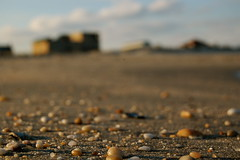 Pebbles by sam.flinn