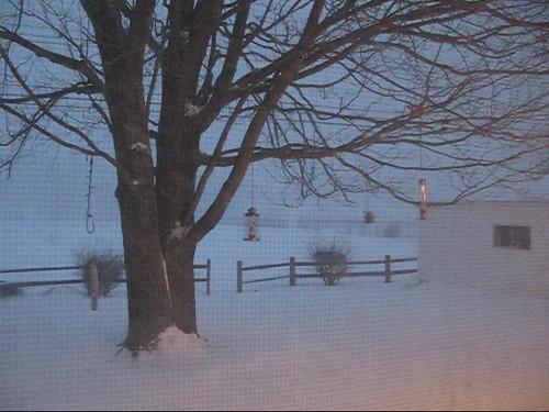 snow storm michigan 12192008