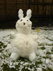 Snow Easter Bunny
