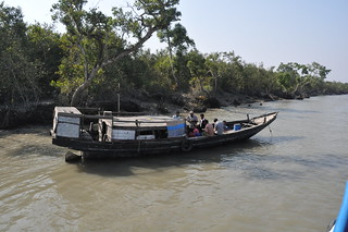Travel from Khulna to the Sundarbans - Things to do in Chittagong