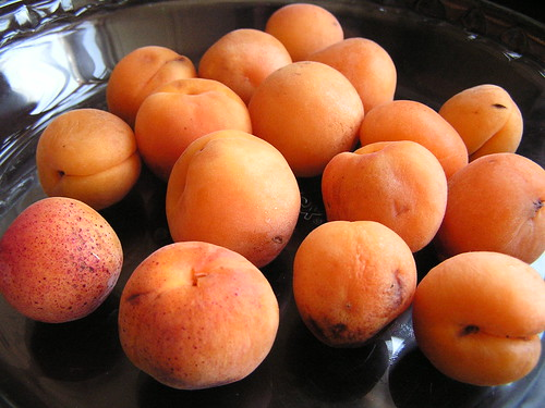 Royal Blenheim Apricots (1)