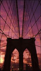 Red de cables en el Puente de Brooklyn