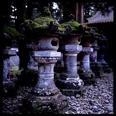 日光 ❁卍❁ 石と苔