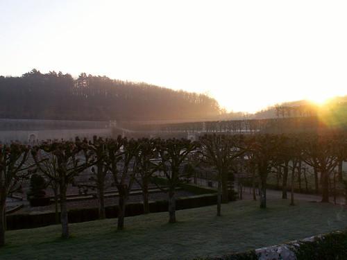 winter sunrise garden villandry limetrees