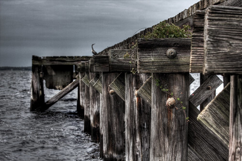 lake bird water dock weeds rust waves decay overcast 70300mm hdr lakemonroe 40d canon40d