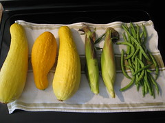 plant(0.0), fruit(0.0), vegetable(1.0), summer squash(1.0), produce(1.0), food(1.0), cucurbita(1.0),
