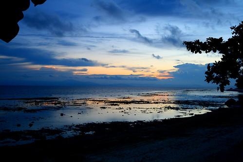 D'Coconut - Pulau Lang Tengah