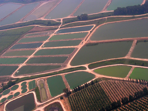 green israel aerial agriculture fishfarming goldenglobe anawesomeshot ysplix pasionphotography llovemypics