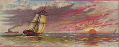 Sail Boat At Sea