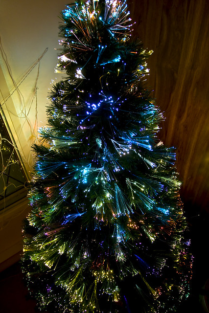 Fiber optic xmas tree flickr photo sharing for Arbol de navidad led