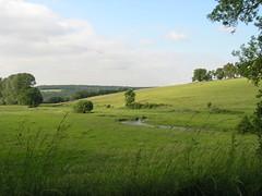 Different greens - Photo of Saint-Loup-sur-Aujon