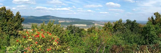 Solymári panoráma a Kálvária hegyről