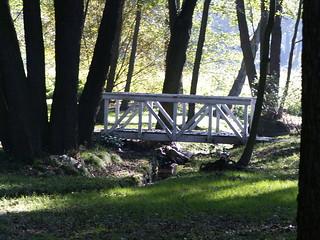 Der Wind, im dunklen Laub weht über die Brücke durch Park zum Schloss über den Teich 396
