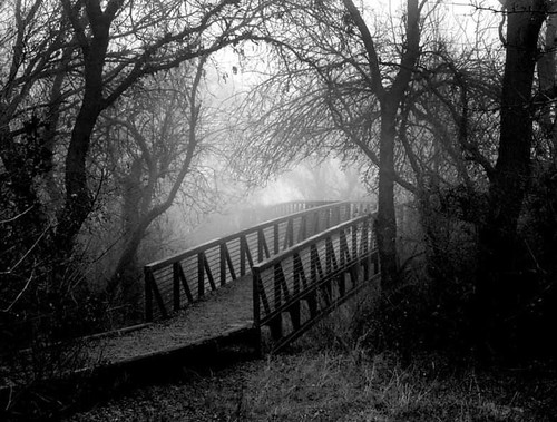 Black & White Nature Photography Portfolio #1: Grand ... |Nature Photography Black And White