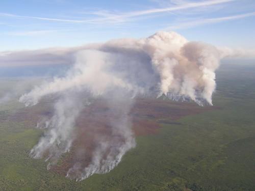 Georgia: Honey Prairie fire at Okefenokee