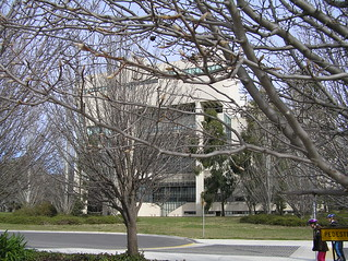 Rear of High Court, Canberra, ACT
