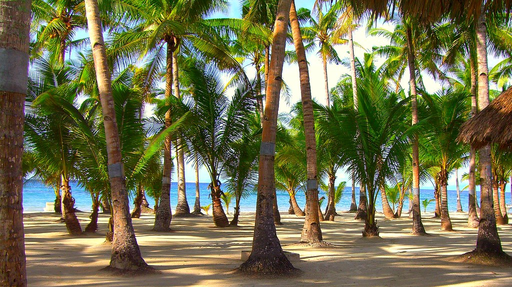 Bohol остров