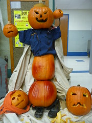 carving(0.0), holiday(0.0), event(1.0), pumpkin(1.0), halloween(1.0), calabaza(1.0), jack-o'-lantern(1.0),