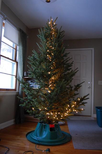 dicas comprar pinheiro natal nos EUA
