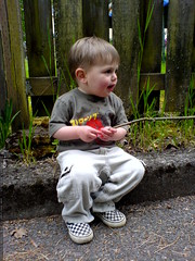 sequoia entertaining himself outside the library   D…