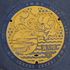 Japan06-04-099