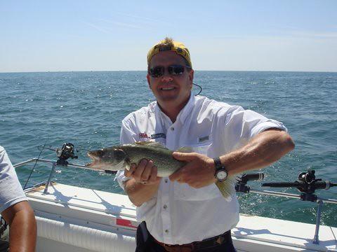 Lake erie walleye fishing aboard the charter boat stray for Lake erie walleye fishing charters