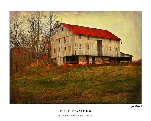 red roofer