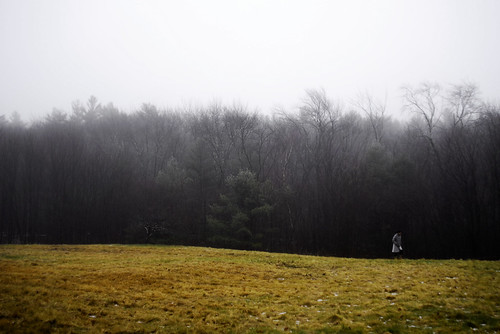 Photograph of woman alone in field flanked by forest