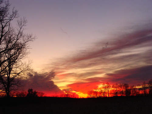 christmas blue winter sunset sky orange tree beautiful yellow night clouds dark