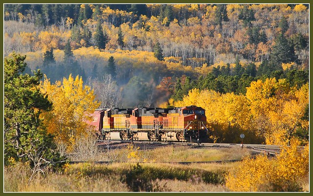 Westbound freight train at Glacier park MT