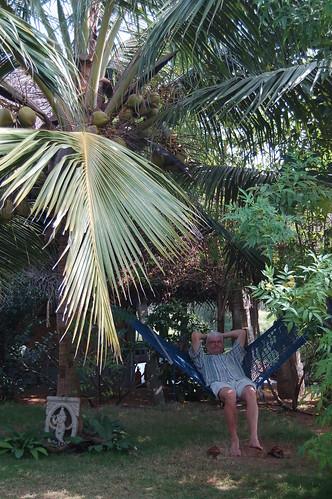 Unter einer Kokospalme neben einer Krishnafigur sizte ich in der Hängematte