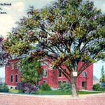 D.M. Gooch School and tree Melrose, Massachusetts postcard