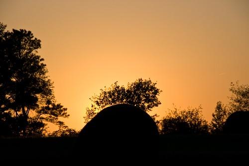 sunset usa pentax 2008 istds zoomlens 18250 da18250 jrpq