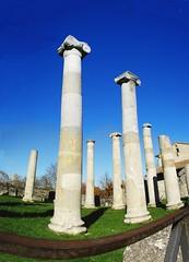 saepinum -architettura e archeologia-