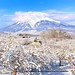 Iwaki Mountain (Volcano) (Hirosaki Japan). © Glenn Waters.  .  2,000 visits to this image.  Thank you.