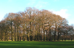 Roundhay Park Golf Course