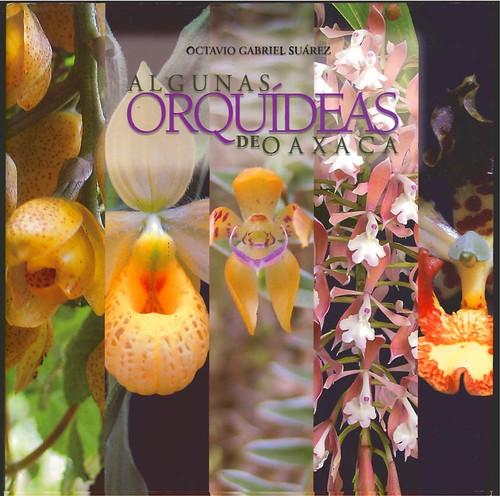 Algunas Orquideas de Oaxaca