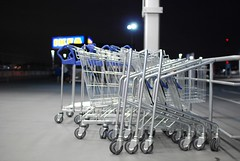vehicle(0.0), shopping cart(1.0),