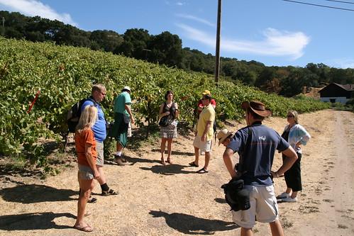 Wine blending seminar